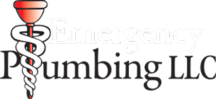 Emergency Sump Pump Insepaction